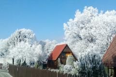 Svojšice v zimě